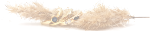 Gutekunst der Juwelier in Feuchtwangen